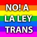 Spagna: la Ley Trans divide il Paese e spacca il governo, Psoe contro Podemos. E il femminismo si oppone. Qui il testo della legge spagnola. E quello della proposta italiana già pronta
